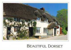 New Postcard, Thatched Post Office & Store at Rampisham, Dorset, Telephone Box