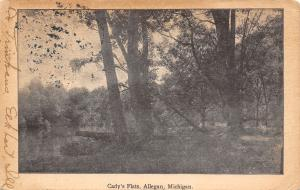 Allegan Michigan~Cady's Flats~Downed Tree Hangs Out Over Lake~1907 Sepia PC