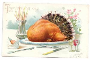 Roast Turkey Tail Feathers RJ Wealthy Embossed Vntg Tuck Thanksgiving Postcard