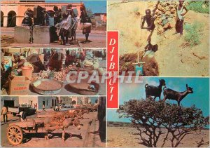 Postcard Modern Djibouti Republic of Djibouti Djibouti Typical Chevre