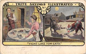 Trite Sayings Illustrated~Fight Like Tom Cats on Roof~Moon~Family Dinner Table