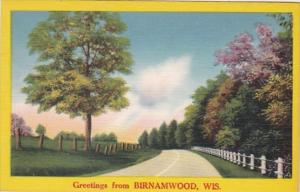 Wisconsin Greetings From Birnamwood 1961