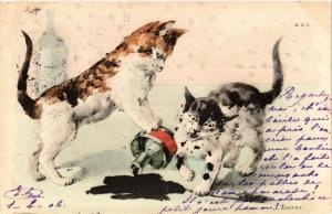 CATS PC Cats and ink (a2141)
