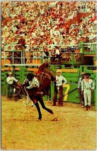 PERRYTON, Texas Postcard Typical Scene Rodeo Bronco Horse Riding Chrome c1950s