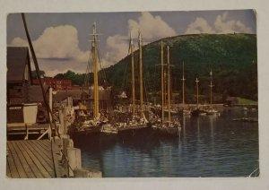 Vintage Large 9x6 Postcard Sailboats Camden Harbor Maine Kodachrome RPPC