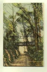 h0179 - School Green , Freshwater , Isle of Wight - postcard
