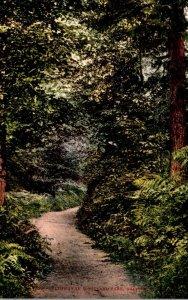 Washington Seattle Pathway Through Woodlawn Park