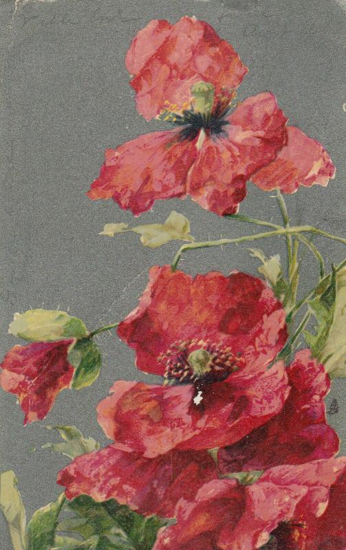 STILL LIFE, Flowers, Poppies , PU-1906 ; TUCK # 6859
