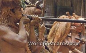 Iquitos, Peru Explorama Lodge, Yanamono  Explorama Lodge, Yanamono
