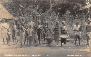 African Native People, Cleaning Rice Protectorate of Sierra Leone