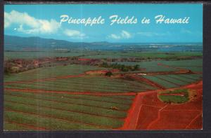 Pineapple Fields,HI