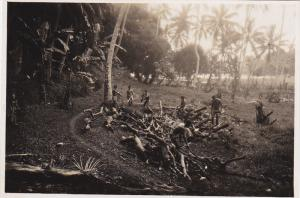 RP: Tahitian Natives cutting down palm trees, Tahiti, 10-20s