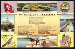 TN - My Homeland multiview card