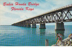 Bahia Honda Bridge The Keys Florida