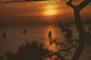 Aberdeen Sunset & Homing Boat Hong Kong China Unused Postcard D32