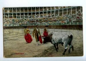 156364 SPAIN Matador TORERO bullfighter BULL Estocada sword