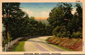Wisconsin Greetings From Tomahawk 1955 Curteich
