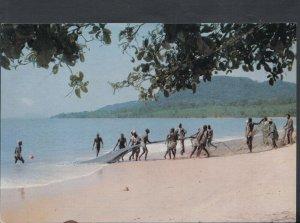 Sierra Leone Postcard - Fishermen on Mamah Beach    T8760