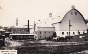 RP: Les Etables - Stables , LA TRAPPE , Quebec , Canada , 1910s