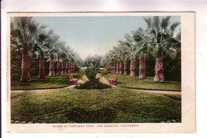 Palms at Eastlake Park, Los Angeles, California, EP Charlton