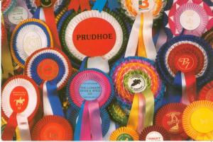 Prudhoe, Rosette and Badge manufacturers, 1994 used Postcard