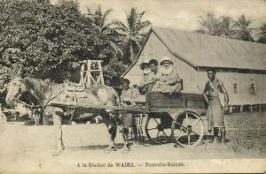 Papua New Guinea, WAIMA, Horse Cart at Station (1929)