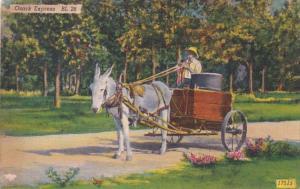 Missouri Ozark Express Donkey Cart