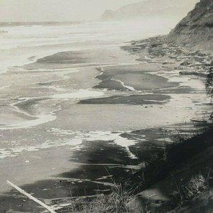 View Near Gleneden Beach Oregon Coast Lincoln County RPPC Photo Postcard F134