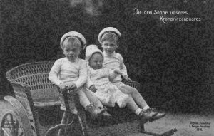 Die drei Sohne unseres Kronprinzenpaares Three Children German Royal Postcard