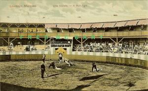 1909 Lourenco Marques PC: Bullfight Scene Mailed to Natal