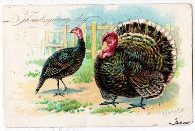 Thanksgiving, Pair of Turkeys by R J Wealthy / Tuck's