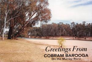 Australia Greetings From Cobram Barooga On the Murray River