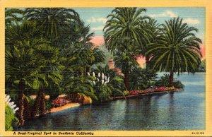 California A Semi'Tropical Spot In Southern California Curteich