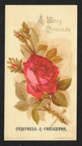 VICTORIAN TRADE CARDS (2) Campbell & Creighton Coffee Greeting Cards