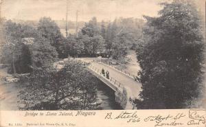 N.Y. Niagara Bridge to Luna Island 1906