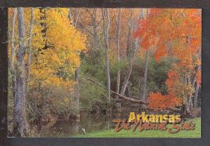 Fall Scene in AR Postcard BIN