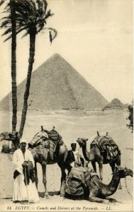 CPA Camels and Drivers at the Pyramids ALGERIE (874027)
