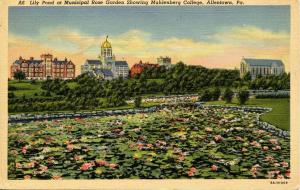 PA - Allentown. Rose Garden, Muhlenberg College