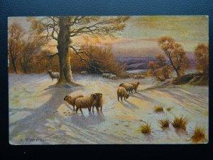 WINTER SCENE & FLOCK OF SHEEP Farming & Country Life c1905 Postcard