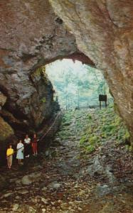 Kentucky Mammoth Cave National Park Cave Entrance
