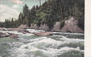 Where the Speckled Trout Hide, Lady Evelyn River, Temagami District, Ontario,...