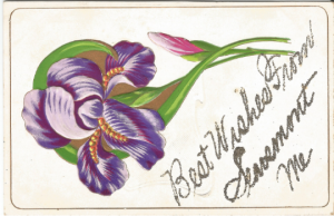 Royal Purple Iris Best Wishes from Searsmont Maine Glitter Embossed Postcard