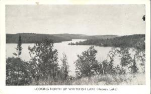 Looking North up Whitefish Lake, Ontario, Canada (aka Heeney Lake) - WB