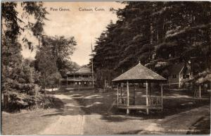 View of Pine Grove, Gazebo, Canaan Connecticut c1917Vintage Postcard O01
