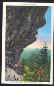 Alum Cave Bluffs Great Smoky Mountain Nat Park  unused