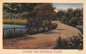 Medomak Maine Waterfront Roadway Greeting Antique Postcard K65884