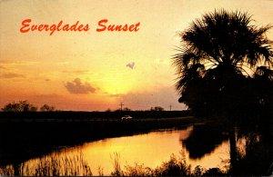 Florida Everglades Bbeautiful Sunset Scene