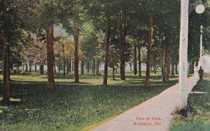 BRAMPTON, Ontario, Canada, 1900-1910's; View Of Park
