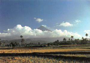 Philippines - Mayon Volcano in Albay