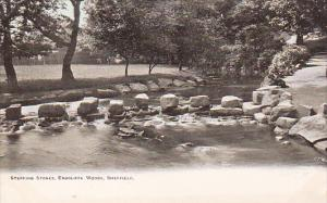 Stepping Stones, Endcliffe Woods, Sheffield, South Yorkshire, England, UK, 19...